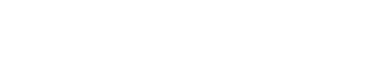 global bridge HOLDINGS